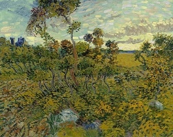 The Sunset At Montmajour, Van Gogh Museum